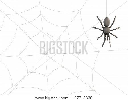 Spider Hanging On Web. 3D.
