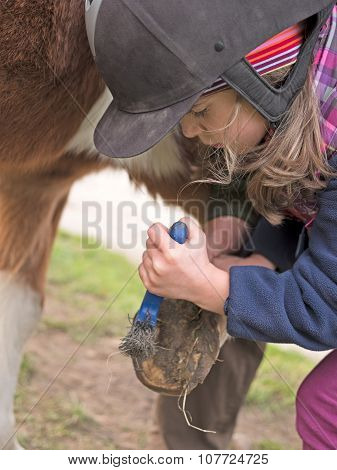 Child Scratches Horse's Hooves