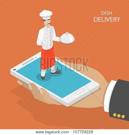 Dish fast delivery flat isometric vector concept.