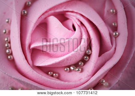 Butter cream rose, macro view
