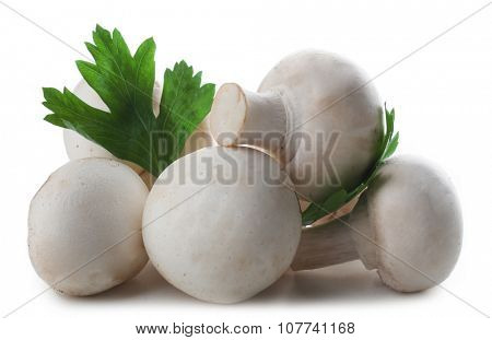 Champignon mushrooms and parsley isolated on white background