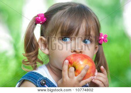 Little Girl Portrait Eating Red Apple Outdoor