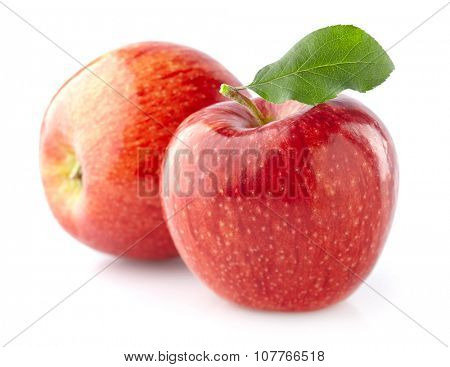 Two apples in closeup
