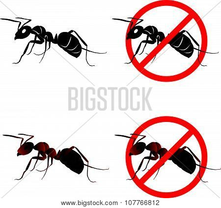 Ant and Stop ant sign symbols vector design