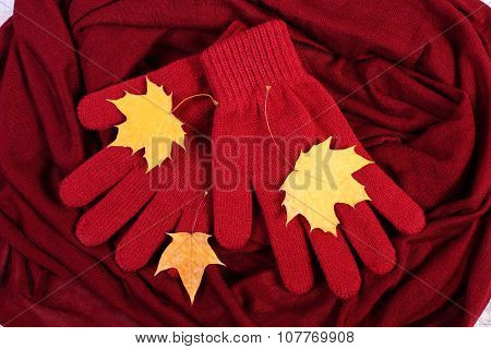 Womanly Gloves And Autumnal Leaves On Burgundy Shawl Background