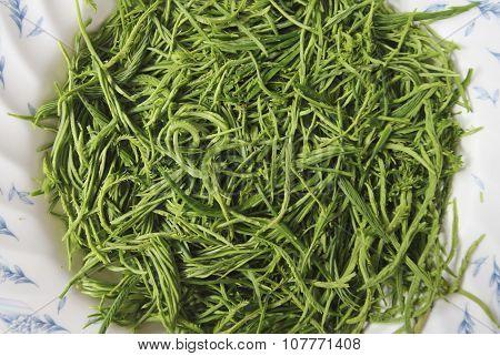 Climbing Wattle Or Acacia Pennata Vegetables