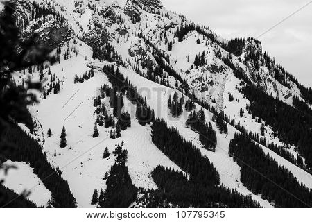 Ski area black and white
