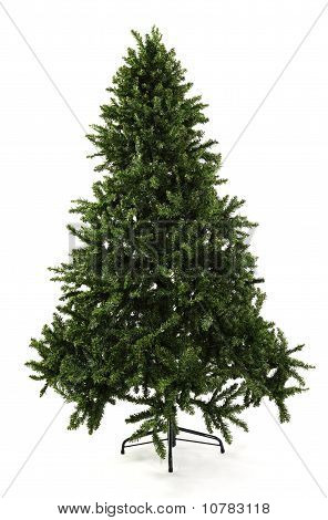 Bare Undecorated Christmas Tree