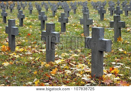 Many gray crosses in the cemetery in autumn