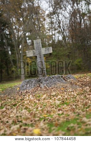 Religious Cross Carved In Tree Stump