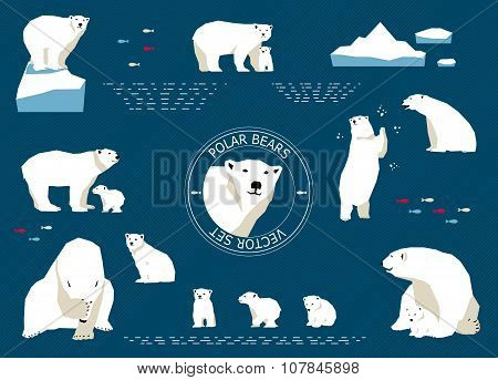 Polar Bears Set