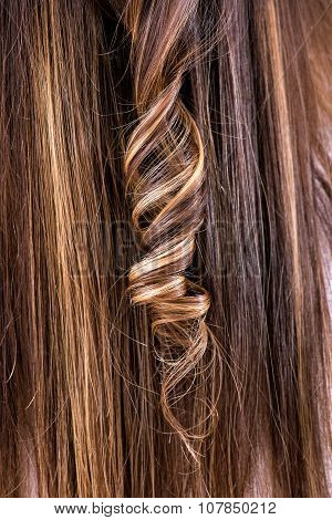 Single Ringlet In Brown Hair