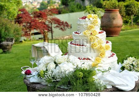 Large Tiered Decorative Wedding Cake