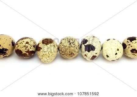 Quail Eggs Across