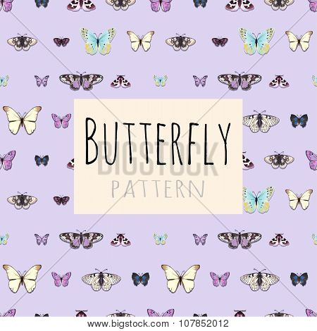 Samples of butterflies with space for text