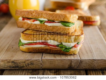 Delicious Italian Sandwich