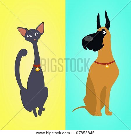 Cat and dog sitting on different backgrounds