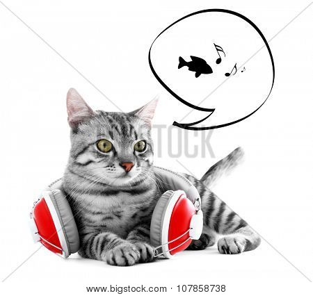 Cat and headphones with cloud bubble above her head, isolated on white