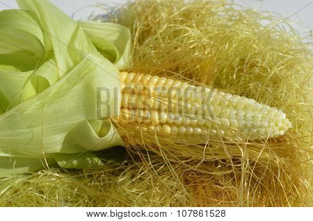 Young Corn With Leaves