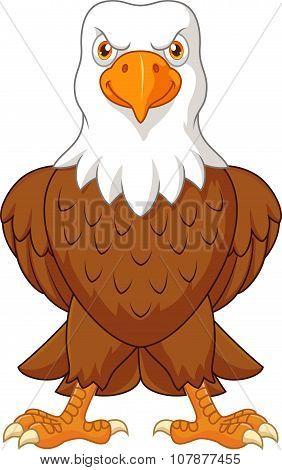 Cartoon bald eagle posing isolated on white background