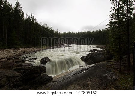 Waterfall in pine forest