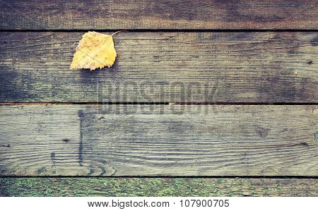Yellow Autumn Leaf On Dark Gray Wooden Table