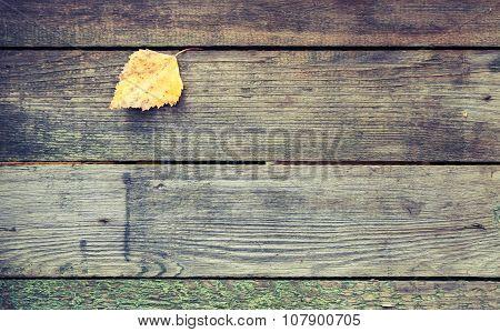 Yellow Autumn Leaf On Dark Gray Wooden Table