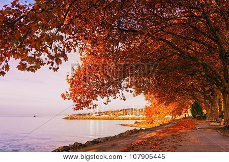 Beautiful autumn landscape, Lake Geneva, Switzerland