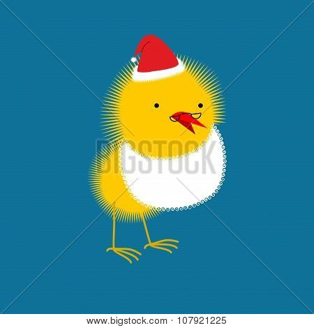Chicken Santa Claus. Small Bird With Beard And Mustache. Christmas  Little Chicken.