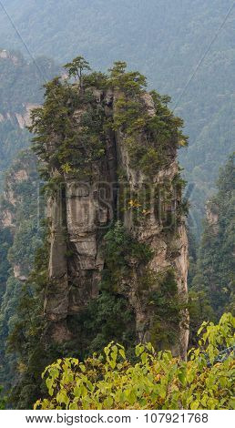 Landscape Of Of Zhangjiajie