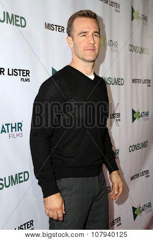 LOS ANGELES - NOV 11:  James Van Der Beek at the