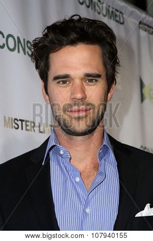 LOS ANGELES - NOV 11:  David Walton at the