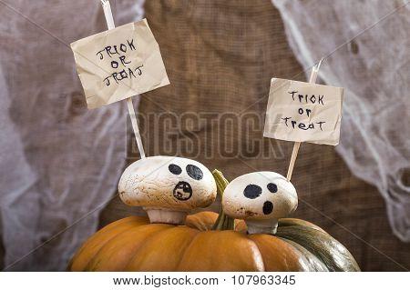 Halloween Champignons On Pumpkin Top