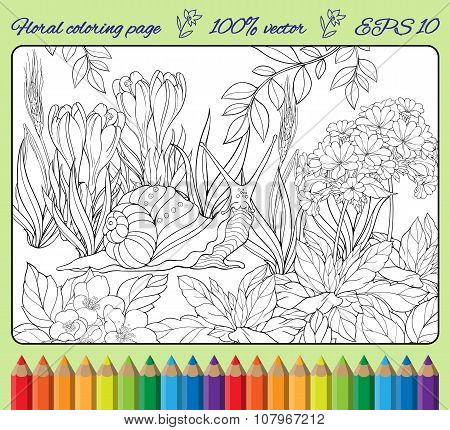 coloring page  of snail crawling through  grass