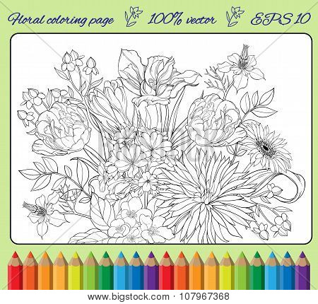 coloring page , various meadow flowers