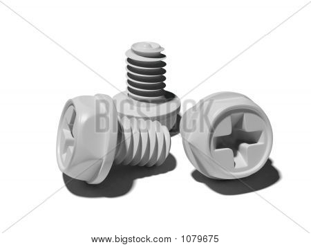 Blank Bolts