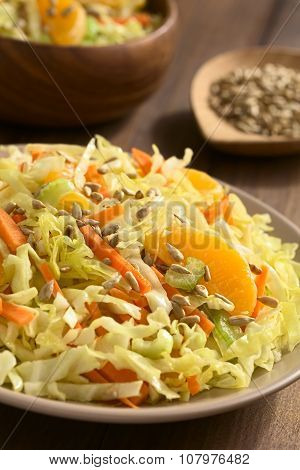 Savoy Cabbage Carrot Celery Orange Salad