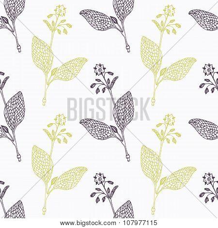 Hand drawn borage branch wirh flowers stylized black and green seamless pattern