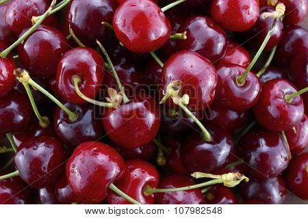 Fresh Black Cherries Fruit