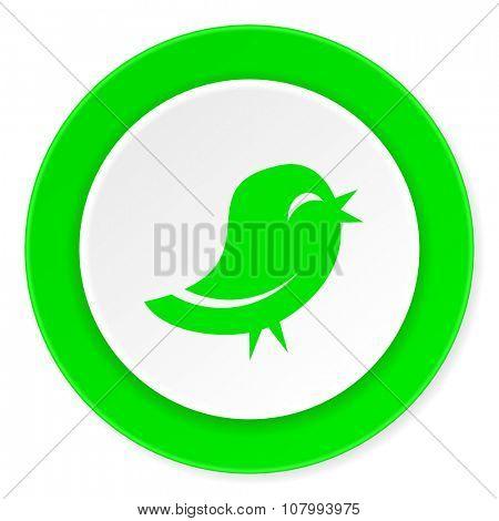 bird green fresh circle 3d modern flat design icon on white background