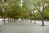 Lane In Beijing