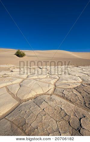 Death Valley Desert Floor