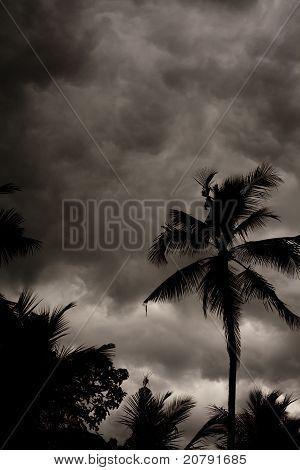 Tropical Monsoon Stormy Sky