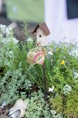 Bonsai Mini Garden Planter Scene Set Up In A Garden poster