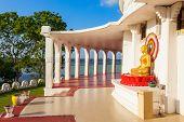 The Ampara Peace Pagoda poster