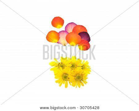 Balloon From Press Flower