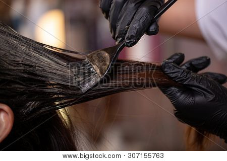 poster of Hair Coloring In The Salon, Hair Styling. Professional Wizard Paints The Hair In The Salon. Beauty C