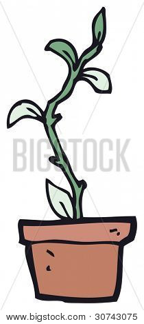 cartoon house plant