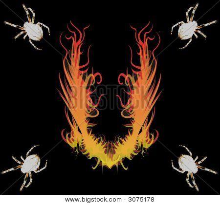 Spinnen- & -Feuer