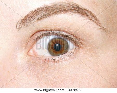 Frightened Eye